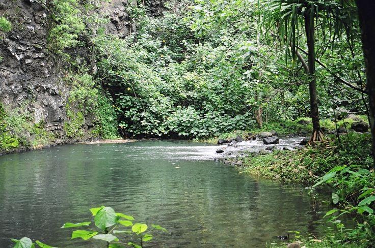 Album Tahiti / Hakaui, Nuku Hiva
