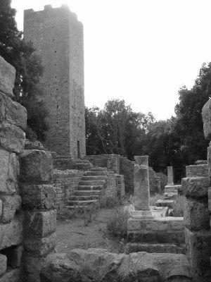 San Rabano | Maremmans