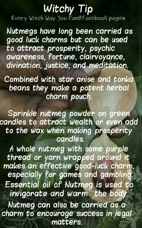 Witchy Tip Nutmeg Witches Brew Witchcraft Witch Herbs
