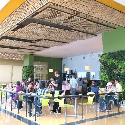 Así se ve nuestro Restaurante Mundo Verde de Envigado, cada vez más amigos de lo saludable prefieren comer en un lugar que evoca lo ecológico y natural. Que tal un ME GUSTA si lo visitaste y te gustó la experiencia.