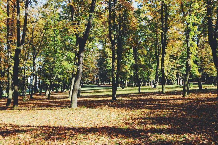 Park Stromovka
