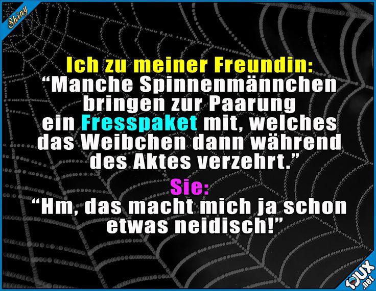 Ok, ab jetzt immer was zu essen dabeihaben :)  Lustige Sprüche und Bilder #Humor #Sprüche #funny #Essen #Freundin #Spinnen #lustig #Memes #Jodel #lustigeMemes