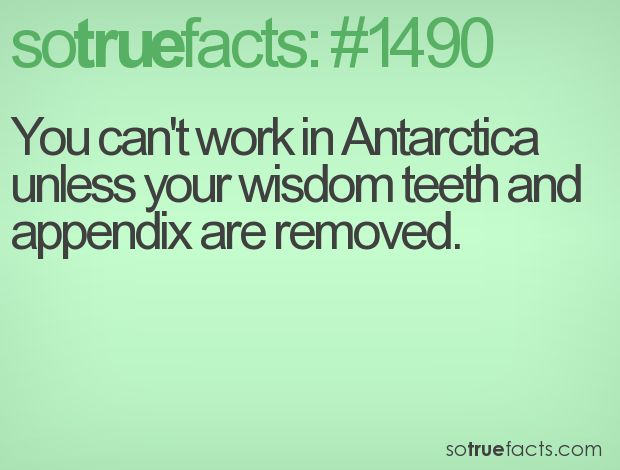 You Can't Work In Antarctica Unless Your Wisdom Teeth And