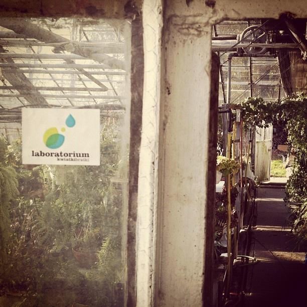 Tu powstają nasze projekty.    http://laboratorium.kwiatkibratki.pl