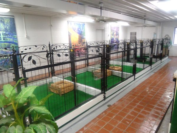 chic dog runs floor and kennel ideas - Dog Kennel Design Ideas