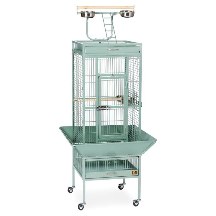Prevue Pet Products Select Wrought Iron Cockatiel Cage 3151 Sage