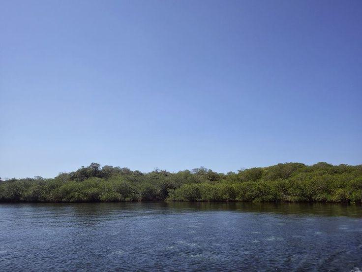 Gili Sulat, Lombok Timur. Sebuah Gili yang memiliki spcies mangrove terbesar di Asia Tenggara.  https://www.facebook.com/lombok.friendly/photos/a.10153406382900983.1073741826.343324185982/10153407775350983/?type=3&theater