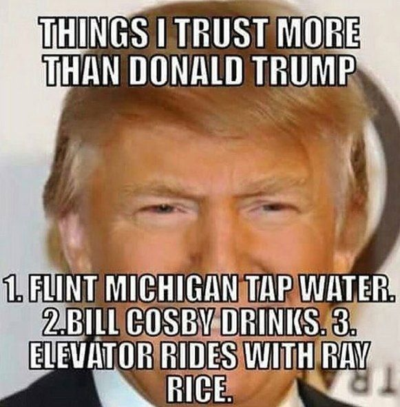 THINGS I TRUST MORE THAN DONALD TRUMP