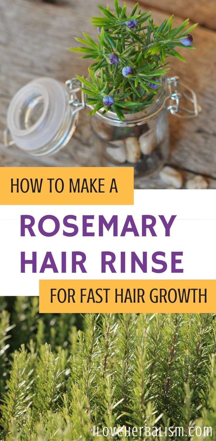 The medicinal properties of rosemary as a tonic and stimulant to the nerves and circulation make it a popular remedy for combating general fatigue and depression, and for improving poor circulation. Rosemary also enhances memory and concentration by increasing blood flow to the head.