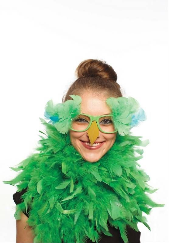 Create a parrot costume with a feathery boa and colored feathers and a yellow paper beak attached to cheap, plastic glasses.