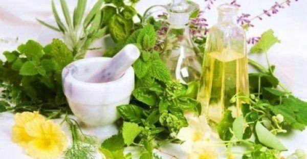 Βότανα που κόβουν την όρεξη και βοηθούν στο αδυνάτισμα