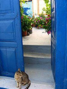 περιμένοντας στην ανοικτή πόρτα!