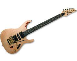 IBANEZ EGEN8-PLB - ÉRABLE FLAMMÉ NATUREL - SIGNATURE HERMAN LI, Achat Guitare électrique IBANEZ - Vente, Acheter
