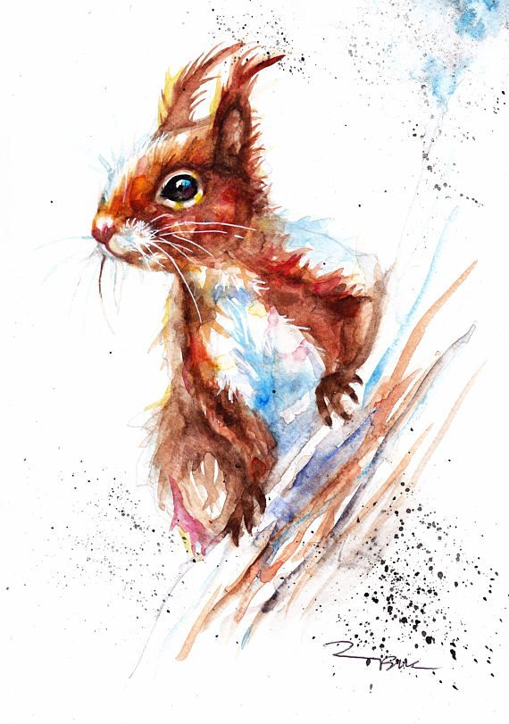 Red Squirrel ,Sale,Original,Watercolour,painting,Print,Card ,Gift,Wildlife,Animal,Wall art,Illustration,Picture,UK Free Postage