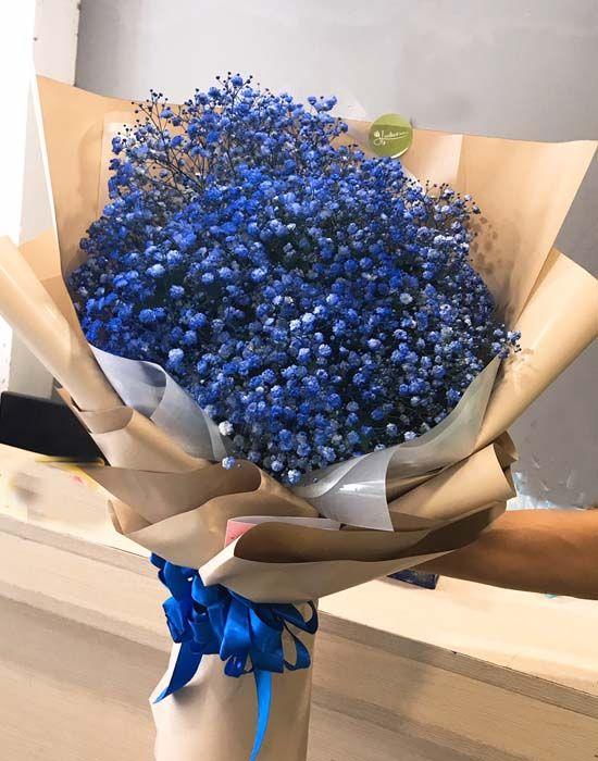 Bó hoa baby xanh blue | Bó hoa, Hoa, Loài hoa kỳ lạ