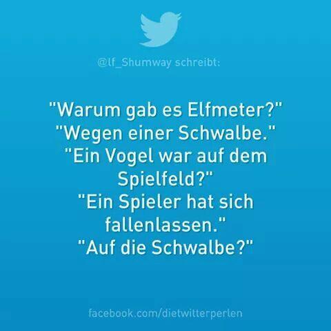 Arme Schwalbe! ;-)