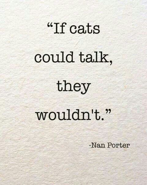 #cats #quotes