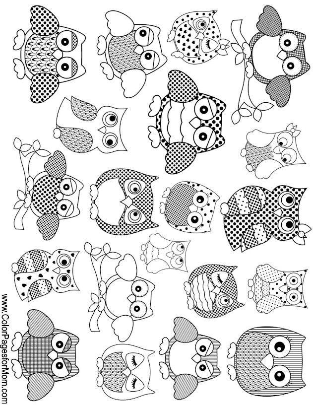 255 Best Owl Coloring Pages For Adults Images