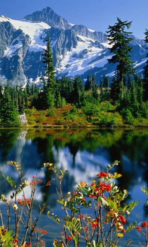 Altai region, Siberia. For the best of art, food, culture, travel, head to theculturetrip.com