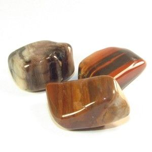 Petrified wood is powerful in removing obstacles. Use it to assist in reaching goals that you are having trouble with or to smooth a path for any endeavor that you anticipate will be ridden with difficult barriers.    Healing properties of petrified wood  Petrified Wood helps restore physical energy and is good in relieving hip and back problems.
