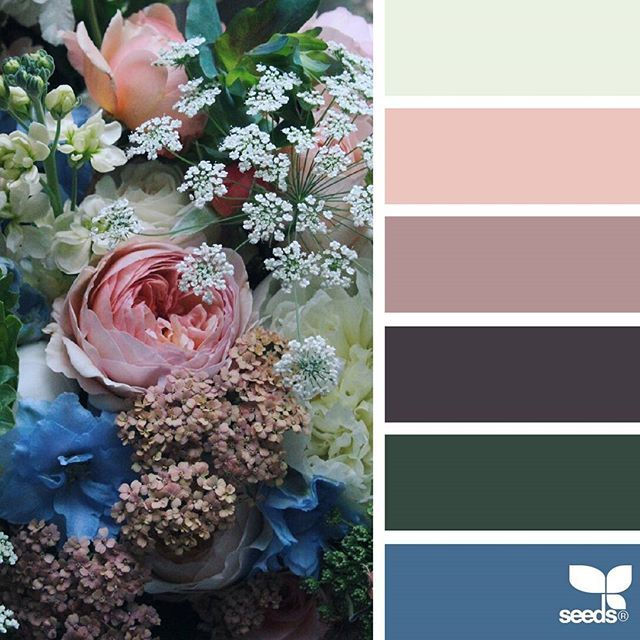 today's inspiration image for { flora palette } is by @cherfoldflowers ... thank you, Caroline, for another incredible #SeedsColor image share!