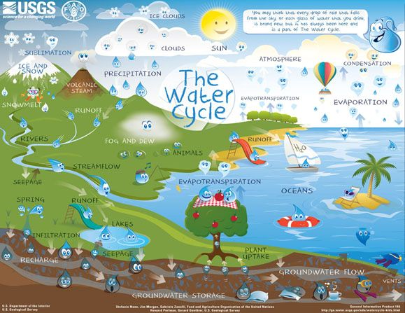 Learn about water conservation and the water cycle with this simple fun water cycle activity on Camp PBS Parents.