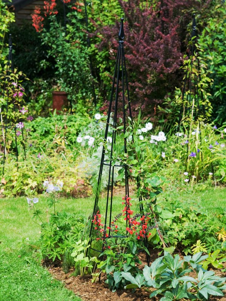 Build a Cheap Metal Garden Trellis - http://www.1stgardenideas.com/build-a-cheap-metal-garden-trellis/ : #GardenDesign A metal garden trellis is a structure for climbing plants and vegetables. Due to the increase of their weight as they grow and produce fruit or flowers, the lattice must be robust. There are many different materials that you can use that are very hard but light. Choose the shape of your metal...