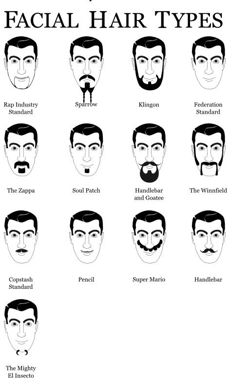 Amazing Beard Types Styles And Names Thebeardfixer Co Uk All Natural Hairstyles Runnerswayorg