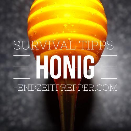 Survival Tipps - Honig von endzeitprepper.com
