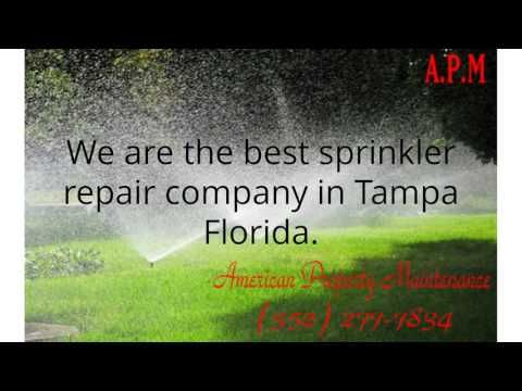 American Property Maintenance is the best irrigation repair business in tampa florida. Lawn Sprinkler Repair Tampa