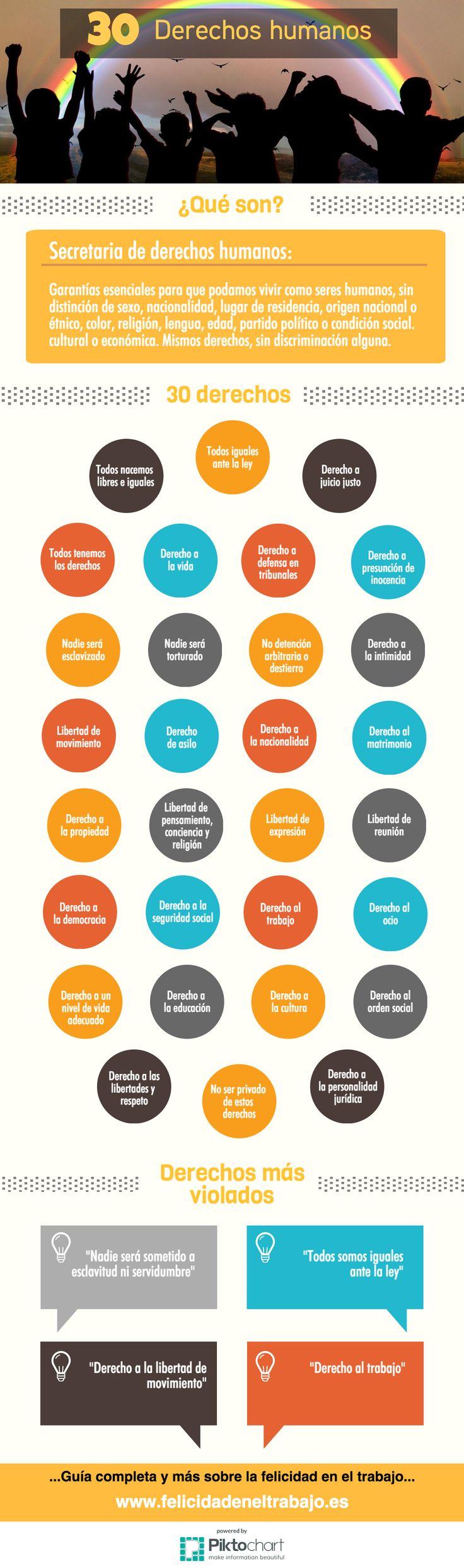 los-30-derechos-humanos-infografia
