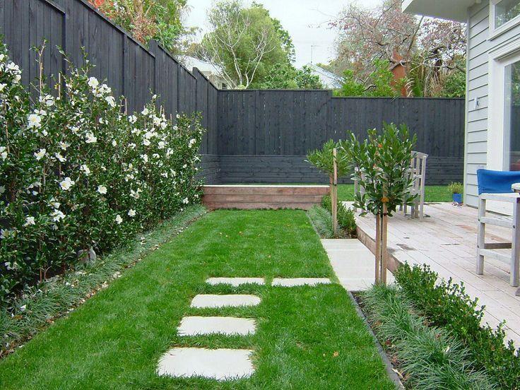 camellia hedge pool - Google Search