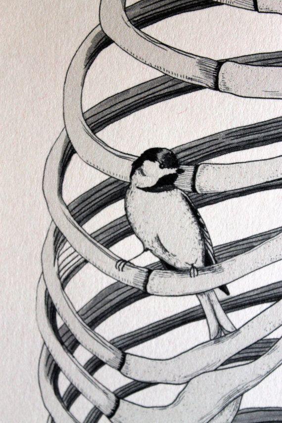 Rib Cage / Bird Cage Medical Art Print by MuseoCurio on Etsy