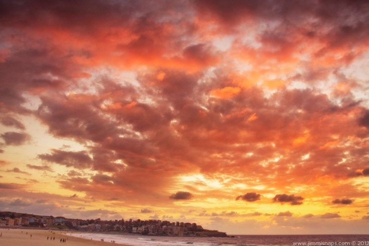 North Side - Legendary Bondi Beach in all it's orange sunrise glory. This image is available to buy, just follow the link.