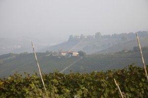 Vinresa Piemonte, vin & tryffel | Specialisten på vinresor & matresor, BKWine