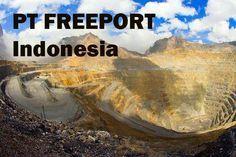 RI Dapat Durian Runtuh jika Tak Perpanjang Kontrak Freeport