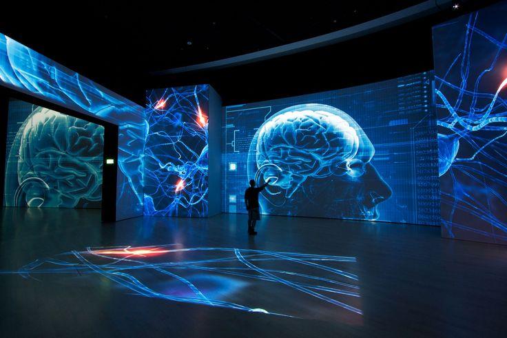 D Technology Exhibition : Best images about exhibition design visitor