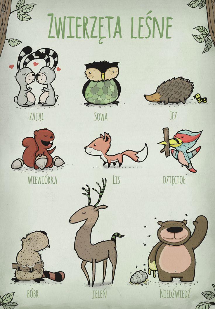 Tiere des Waldes (Polnisch)