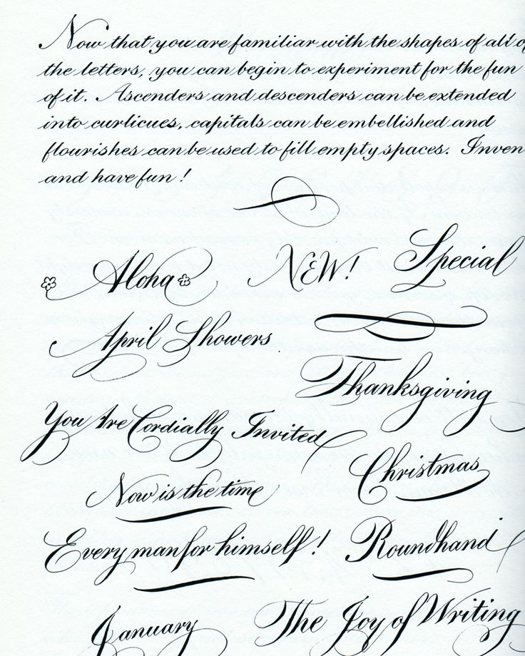ampersand examples copperplate - Google Search