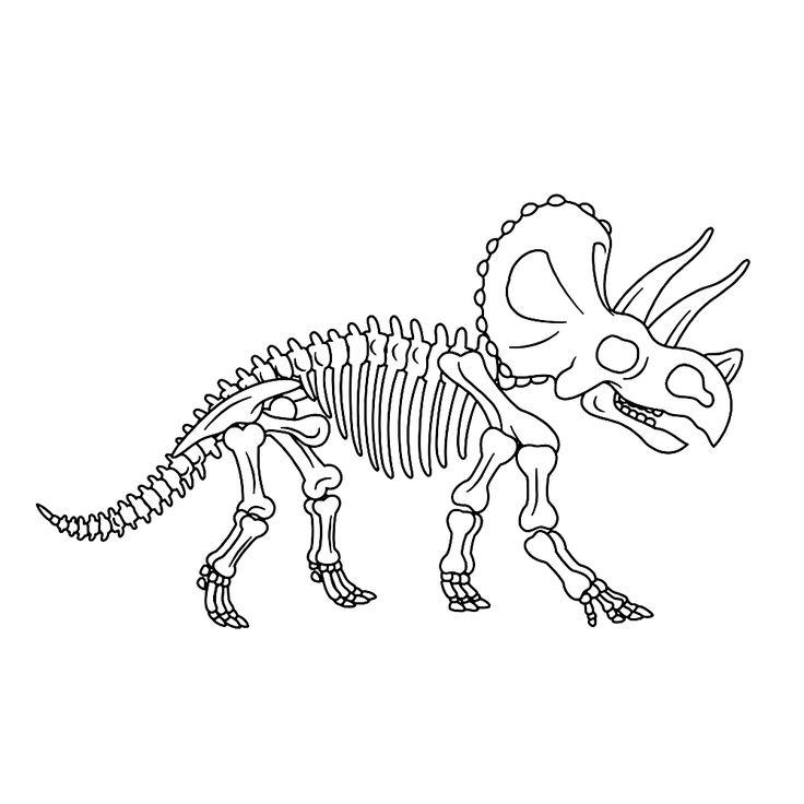 bekijk fossielen-en-dino-skeletten-0005 kleurplaat