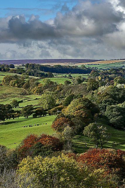 Autumn in Esk Valley, England
