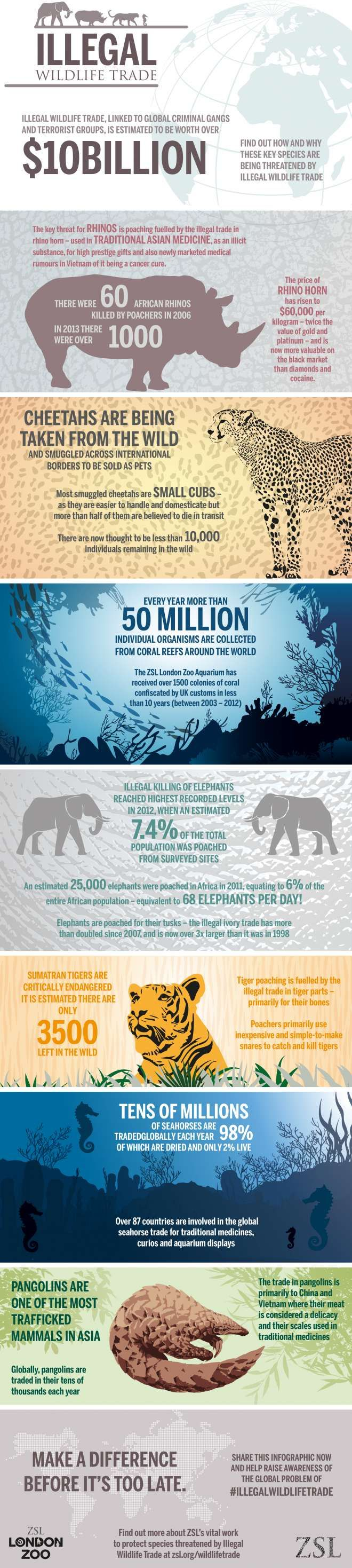 This information pertains to ways humans are decreasing populations of animals. There are a lot of statistics given for various species. Most of these actions are illegal but they are still taking place and endangering animal populations.