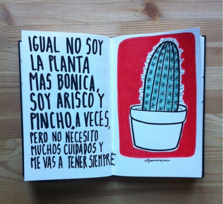 IGUAL NO SOY LA PLANTA MÁS BONICA, SOY ARISCO Y PINCHO AVECES, pero no necesito mucho cuidados y me vas a tener siempre