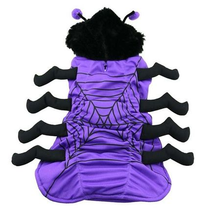 A one-piece spider costume for dogs up to 70 lbs.