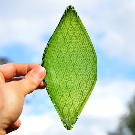 """The """"first man-made biological leaf"""" could enable humans to colonise space"""
