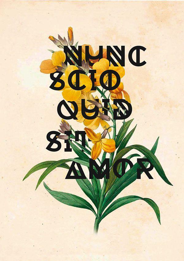 """""""Nunc scio quid sit amor"""" Poster Design on Behance"""