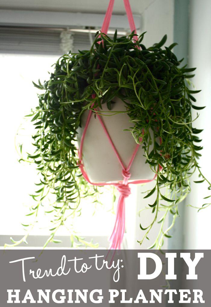 Trend to Try: DIY hanging planter - JSOnline
