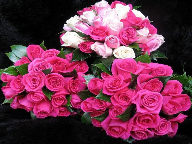 tres hermosos ramos de rosas - Fotos De Ramos De Flores Preciosas