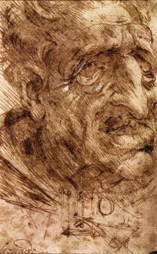 Leonardo da Vinci - Head of an Old Man...1488