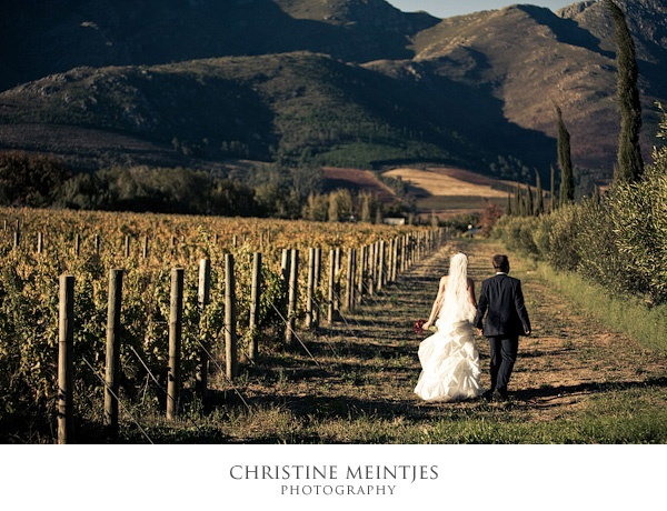 Destination wedding at Grande Provence in Franschhoek, South Africa